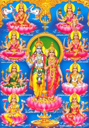 Kundli pro match making with horoscope